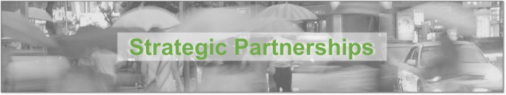 Strategic Partnerships At Becky A Park Global